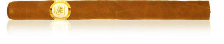 VdS White Label Churchill _ 7 x 48