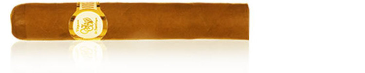 VdS White Label Robusto _ 5 x 50